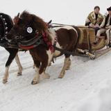 Image: Gazda Parade – Kumoterki sleigh races and other winter attractions
